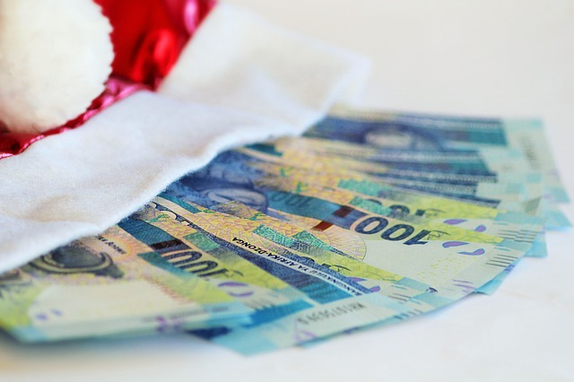 vánoční bonus.jpg